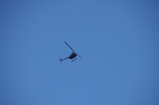 fullsize-heli-out-of-paraparaumu-airfield_25177978683_o