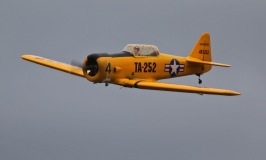 allens-harvards-canopy-just-starting-to-lift-0t8a9342_25639077874_o